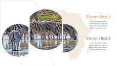 사파리 동물 프레젠테이션 슬라이드 ppt_23
