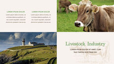 Cow Product Deck_14