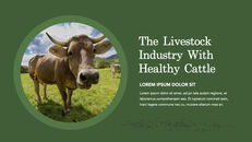 Cow Product Deck_16