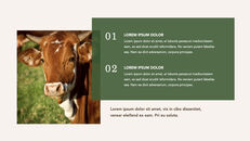 Cow Product Deck_17