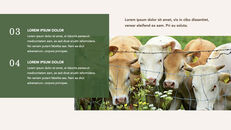Cow Product Deck_18
