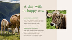 Cow Product Deck_21