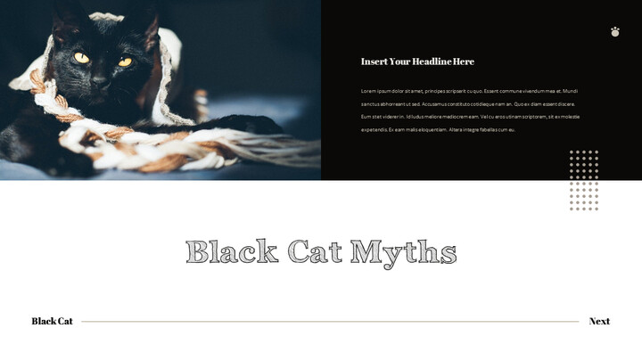 Black Cat Simple PPT Templates_02