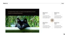 Black Cat Simple PPT Templates_05
