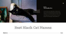 Black Cat Simple PPT Templates_10