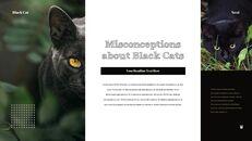 Black Cat Simple PPT Templates_18
