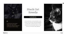 Black Cat Simple PPT Templates_21