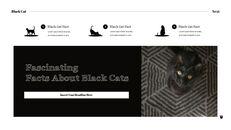 Black Cat Simple PPT Templates_22