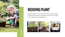 Gardening presentation slide_11