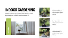Gardening presentation slide_25