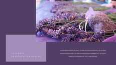 Lavender Presentation PowerPoint Templates Design_15