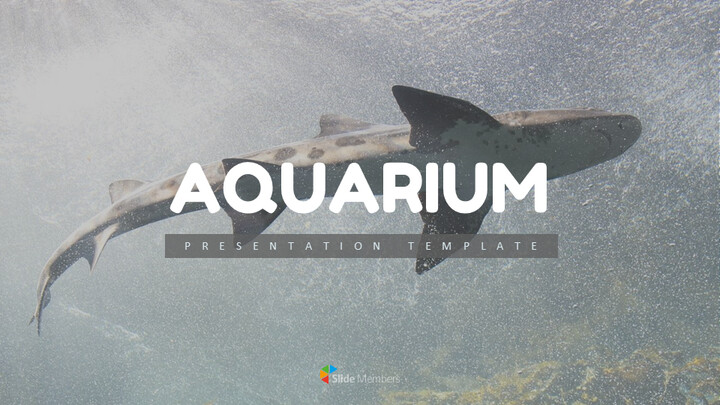Aquarium Simple Slides Design_01