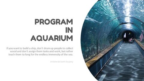 Aquarium Simple Slides Design_03