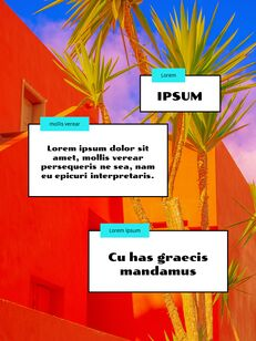 Colorful Tropical Concept PowerPoint Presentation Design_06