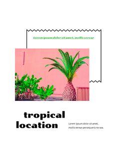 Colorful Tropical Concept PowerPoint Presentation Design_09