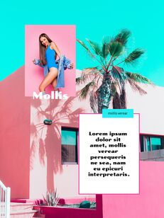 Colorful Tropical Concept PowerPoint Presentation Design_12