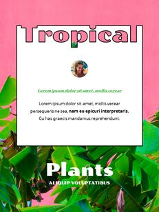 Colorful Tropical Concept PowerPoint Presentation Design_21