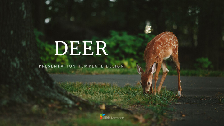 Deer Simple Google Slides Templates_01
