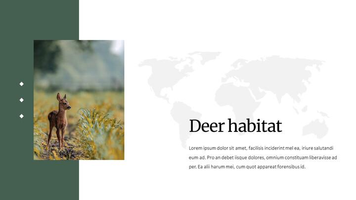 Deer Simple Google Slides Templates_02