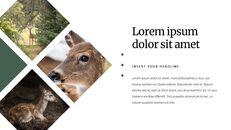 Deer Simple Google Slides Templates_04