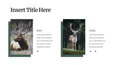 Deer Simple Google Slides Templates_05