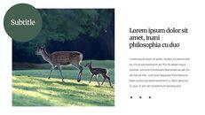 Deer Simple Google Slides Templates_06
