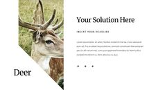 Deer Simple Google Slides Templates_09