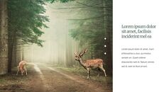 Deer Simple Google Slides Templates_15