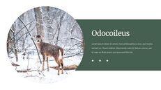 Deer Simple Google Slides Templates_17