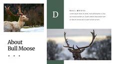 Deer Simple Google Slides Templates_18