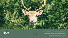 Deer Simple Google Slides Templates_24