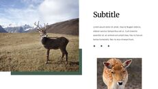 Deer Simple Google Slides Templates_25