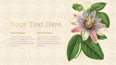 Vintage Flower PowerPoint Presentation PPT_13