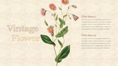 Vintage Flower PowerPoint Presentation PPT_21