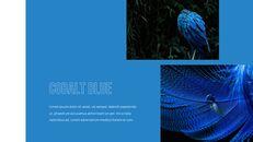 Blue Spectrum PPT Templates_11
