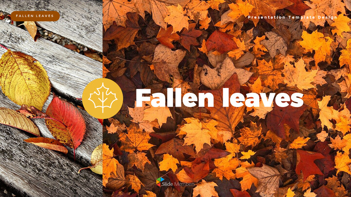 fallen leaves PowerPoint Templates Multipurpose Design_01