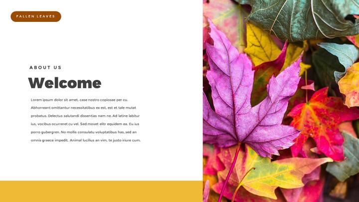 fallen leaves PowerPoint Templates Multipurpose Design_02