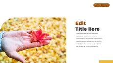 fallen leaves PowerPoint Templates Multipurpose Design_11