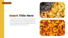 fallen leaves PowerPoint Templates Multipurpose Design_12