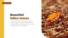fallen leaves PowerPoint Templates Multipurpose Design_16