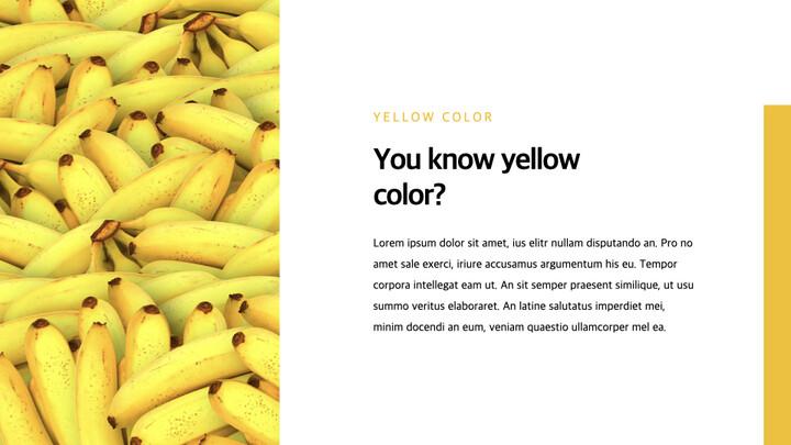 Yellow Spectrum Simple Keynote Template_02