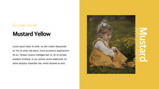 Yellow Spectrum Simple Keynote Template_14