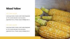 Yellow Spectrum Simple Keynote Template_22