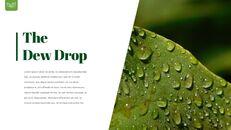 Dew Drop PowerPoint Templates Design_03