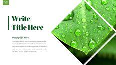 Dew Drop PowerPoint Templates Design_05
