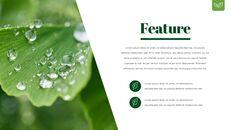 Dew Drop PowerPoint Templates Design_06