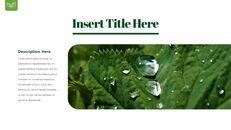Dew Drop PowerPoint Templates Design_07