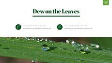 Dew Drop PowerPoint Templates Design_14