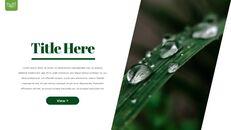 Dew Drop PowerPoint Templates Design_15