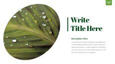 Dew Drop PowerPoint Templates Design_16
